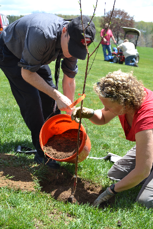 rich_catherine_planting_tree