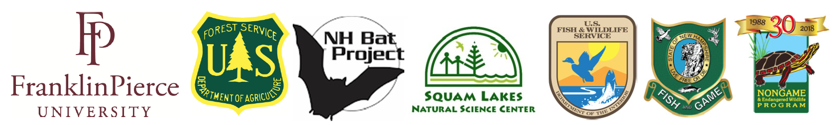 Bat Festival is Presented By These Organizations